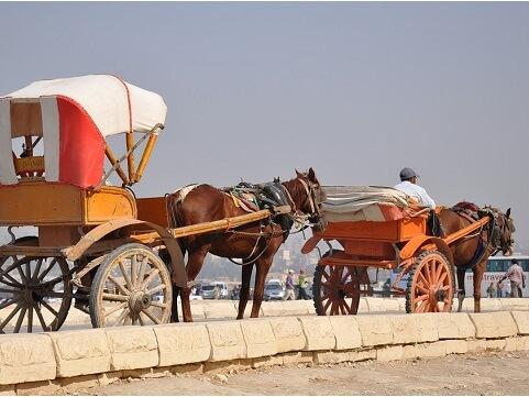 wycieczka do Kairu