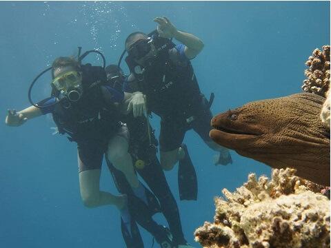 nurkowanie z Biurem Sfinks